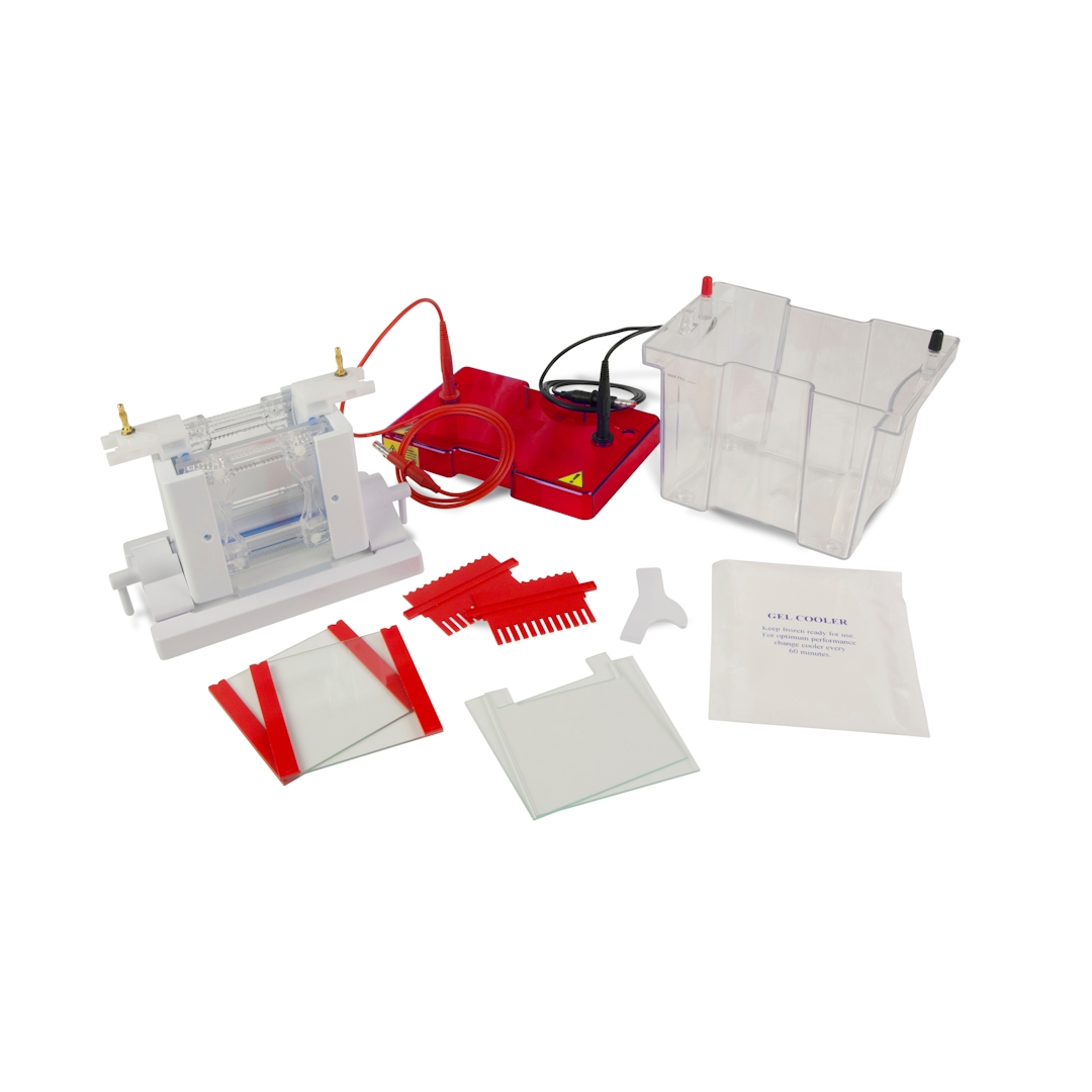 SynPage Mini vertical protein electrophoresis system