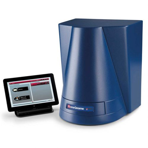 GeneGnome chemiluminescence imaging system with tablet