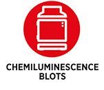 Chemiluminescence-blots