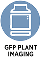 GFP plant imaging